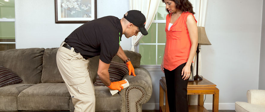 Bridgewater, MA carpet upholstery cleaning
